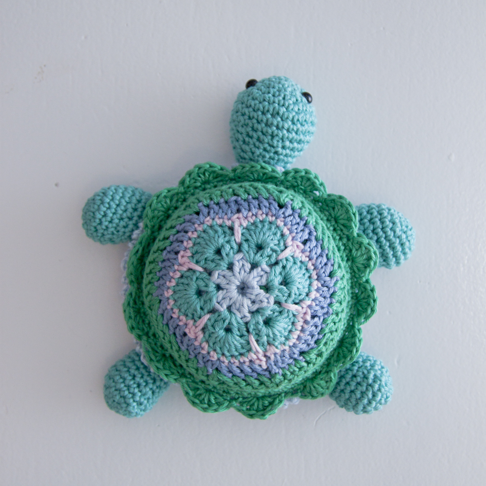 Turtle completed