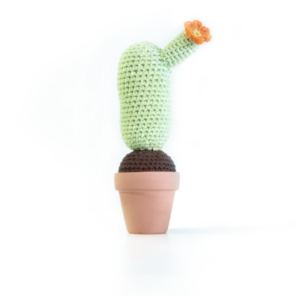 Free crochet cactus pattern by Ina Rho